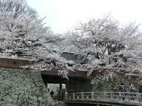 2高島城冠木橋.jpg