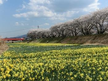 上川2.jpg