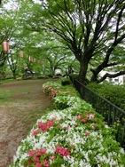 高島公園1.jpg